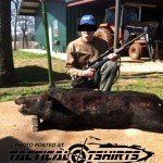 Shooting Pigs In Texas