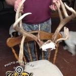 Crazy Deer 2015