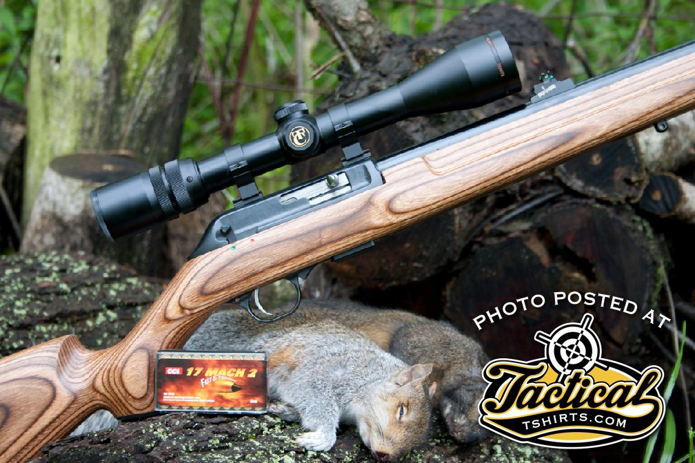 While the 17 HMR provides explosive performance on small game, the 17 Mach 2 is tamer and a better cartridge for edible game.