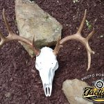 Mountain Mike Skull Master Mounting Kit
