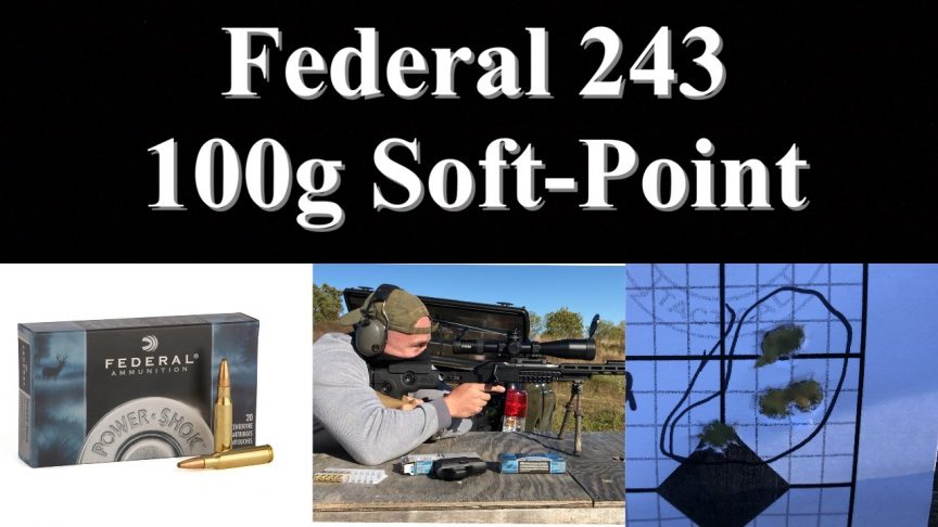 Federal 243 Ammo Group Test / Zero/.