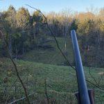 Deer hunting. John1911