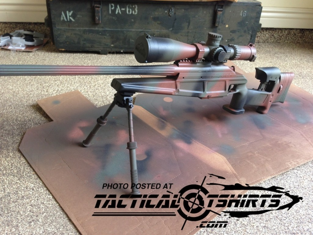Blaser Tactical 2 Painted