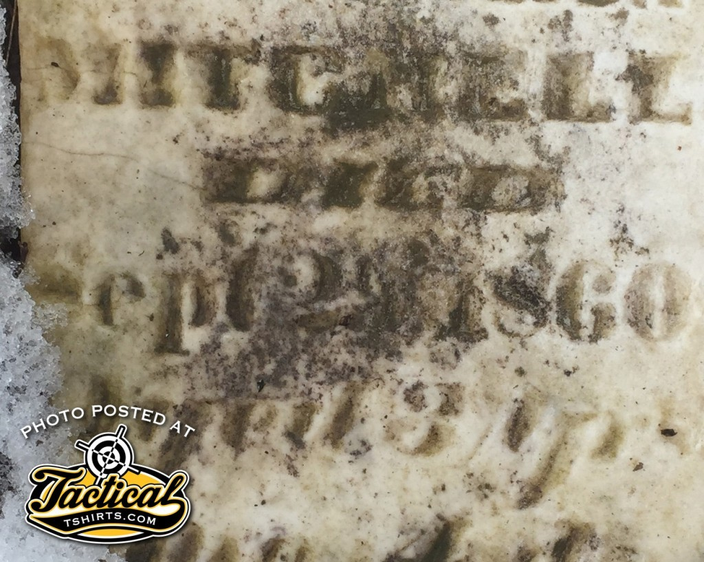 3 years and 4 months. Young Mitchell Girl who died in 1860