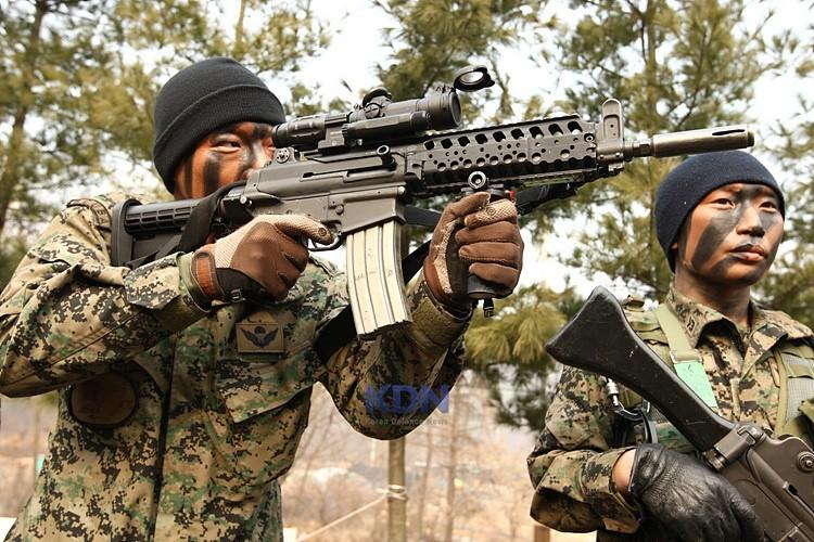 ROK Rifle