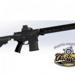 Another 12-Gauge AR15