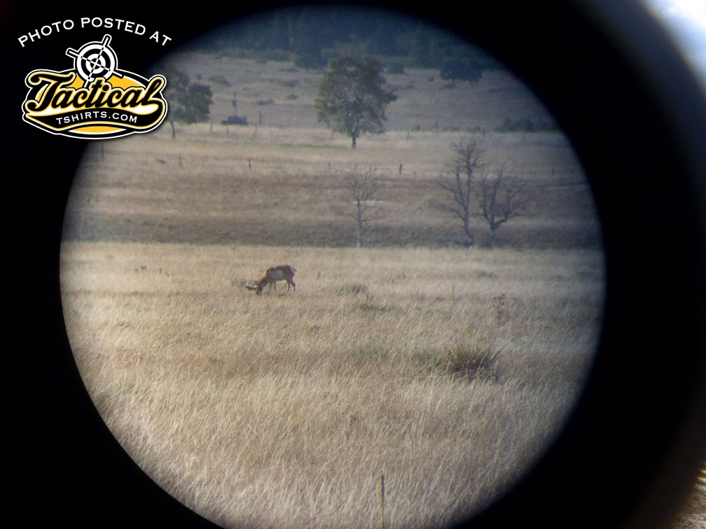 This is what an antelope looks like when viewed through a 20x spotting scope. Just past the antelope is a ditch that a hunter may be able to use to sneak up close.