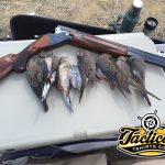 Freeze's Dove Gun – Winchester 101