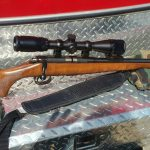 CZ 452 w/Bushnell Banner Scope