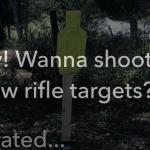 Wanna Shoot My New Steel Targets?