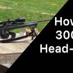 Howa 300 Yard Headshot