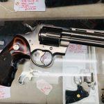 POTD – Another Colt Python