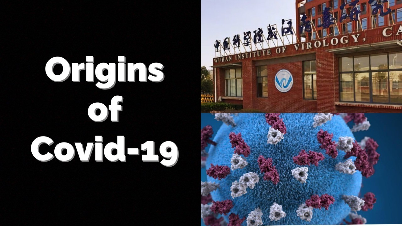 Origins of COVID-19